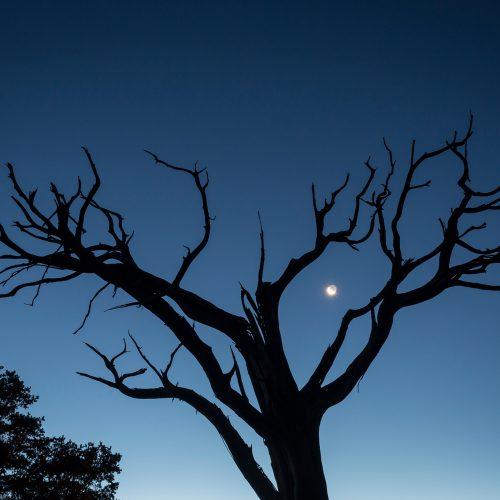 First Light at Grand Canyon © Jon Kempner